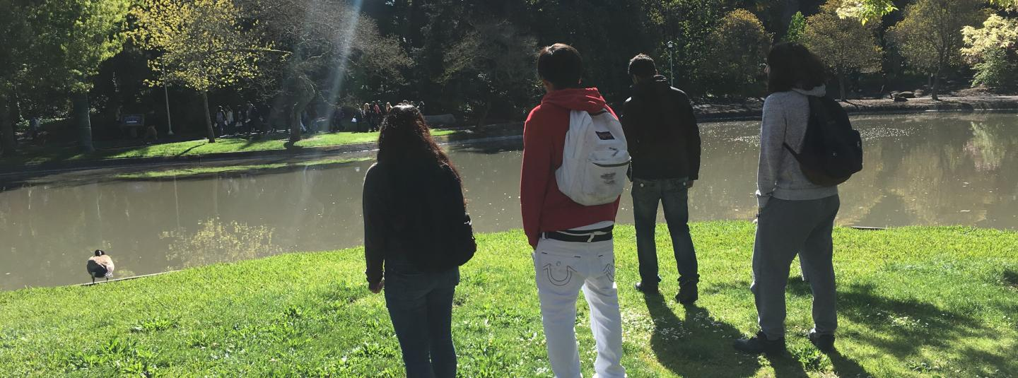 Students watching the ducks in Sonoma State's pond