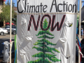 "A sign that reads ""Climate action now. 35 Sonoma County "" with a tree."
