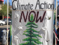 """A sign that reads """"Climate action now. 35 Sonoma County """" with a tree."""