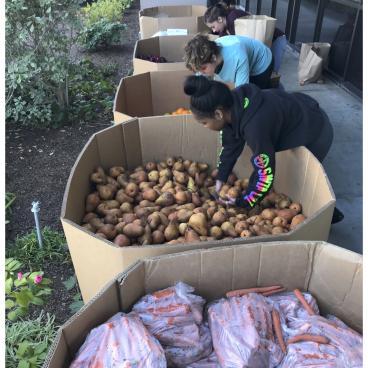 Volunteers sorting food into bags